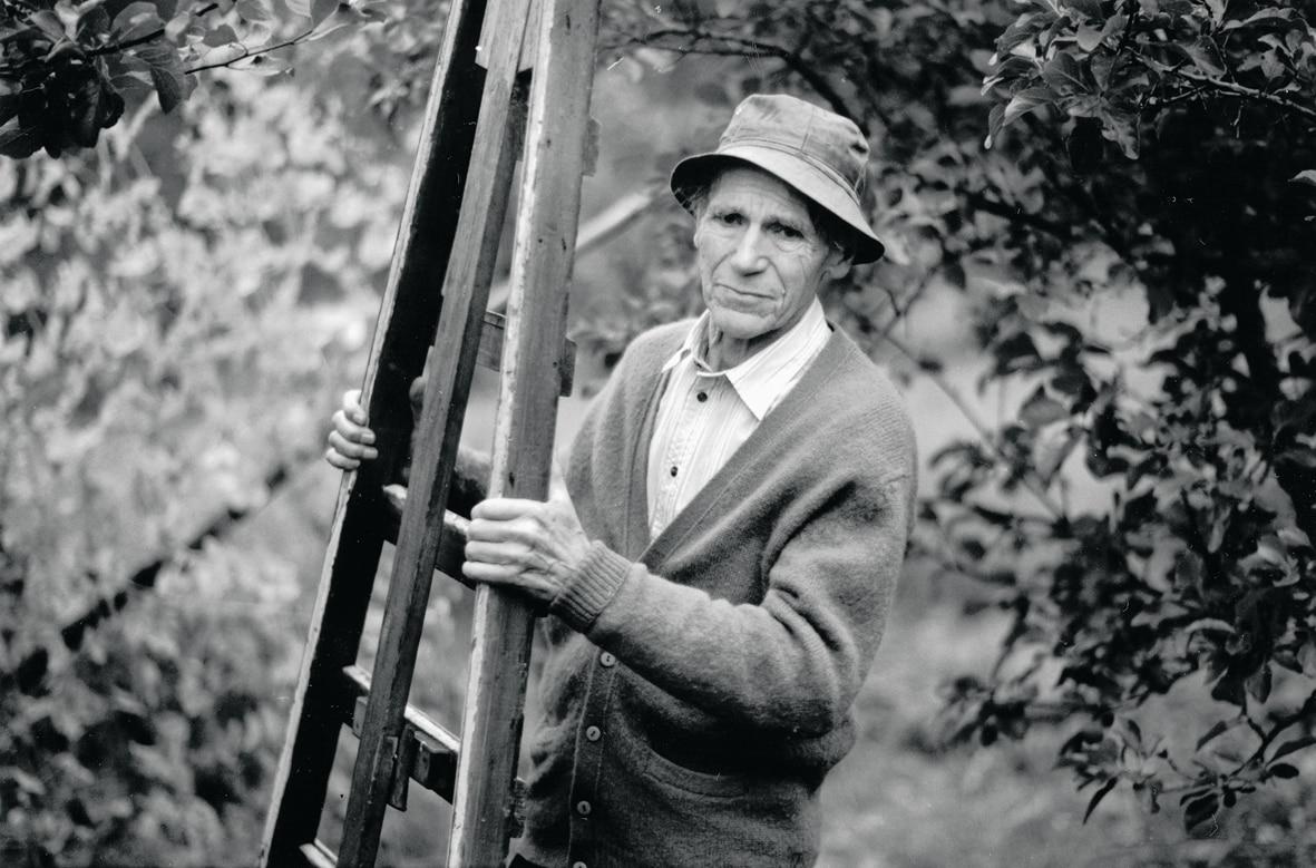 Olav H. Hauge