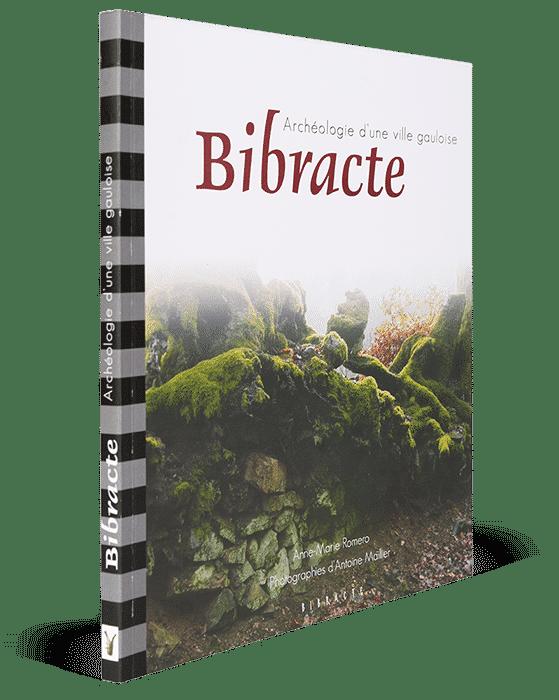 Bibracte, archéologie d'une ville gauloise
